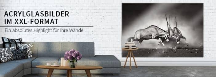 der gro e xxl wandbilder shop wall. Black Bedroom Furniture Sets. Home Design Ideas