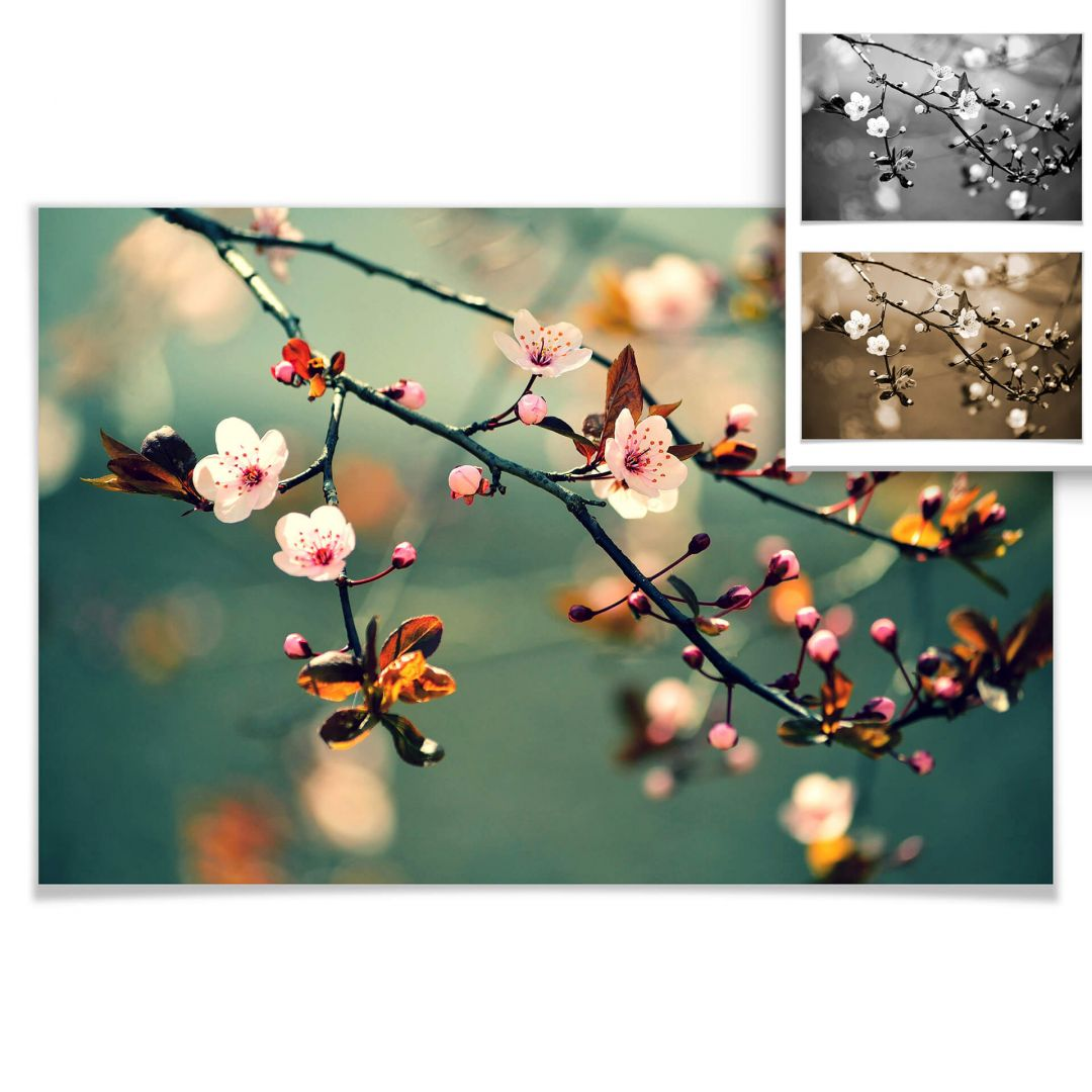 Poster Frühlingserwachen