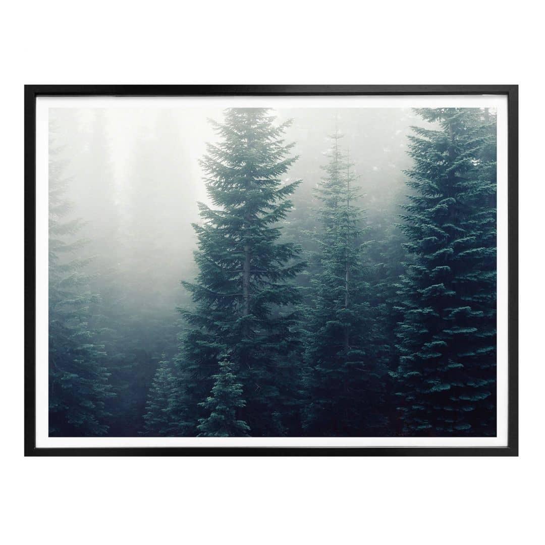 Poster Nebel im Wald