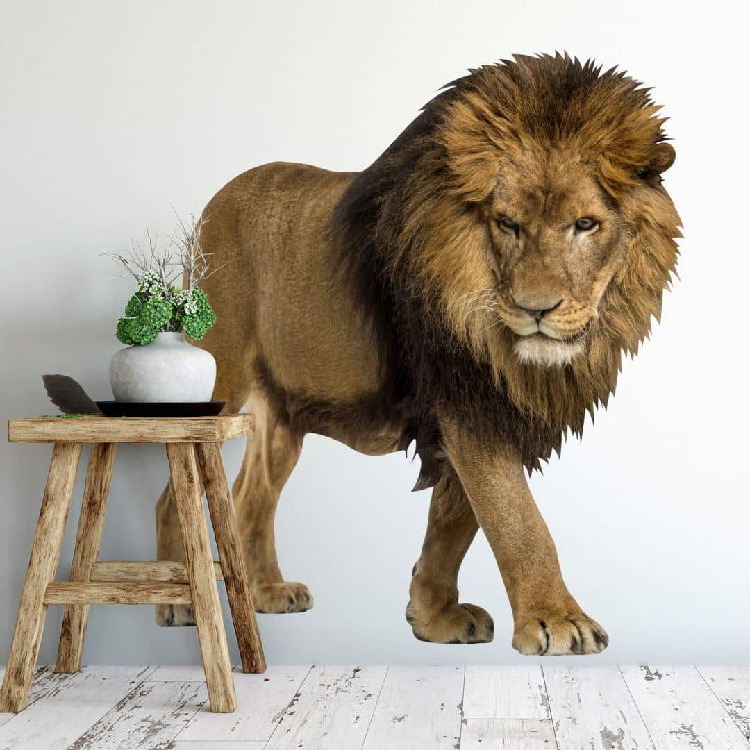 Real Lion Wall Sticker Wall Art Com