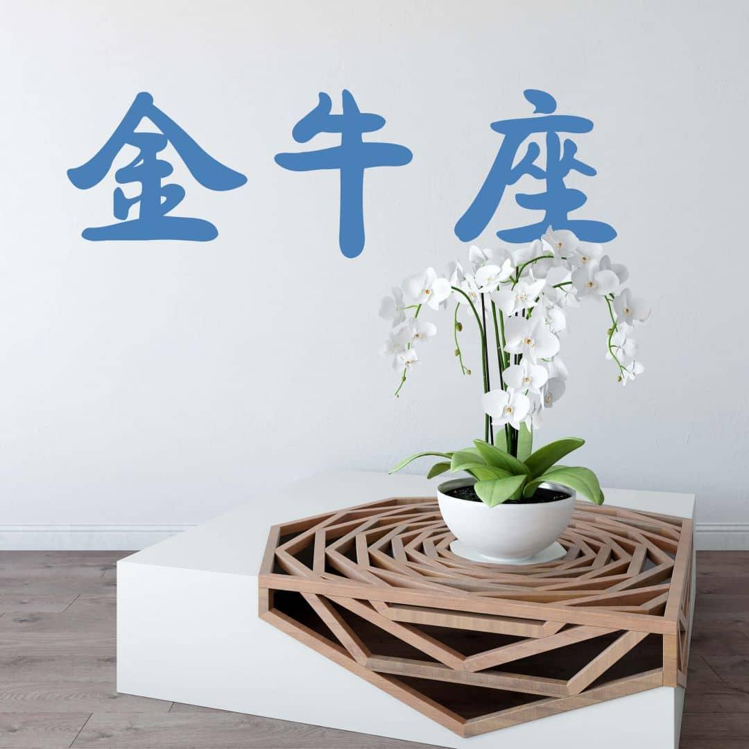 Wandtattoo Sternzeichen in chinesischer Schrift