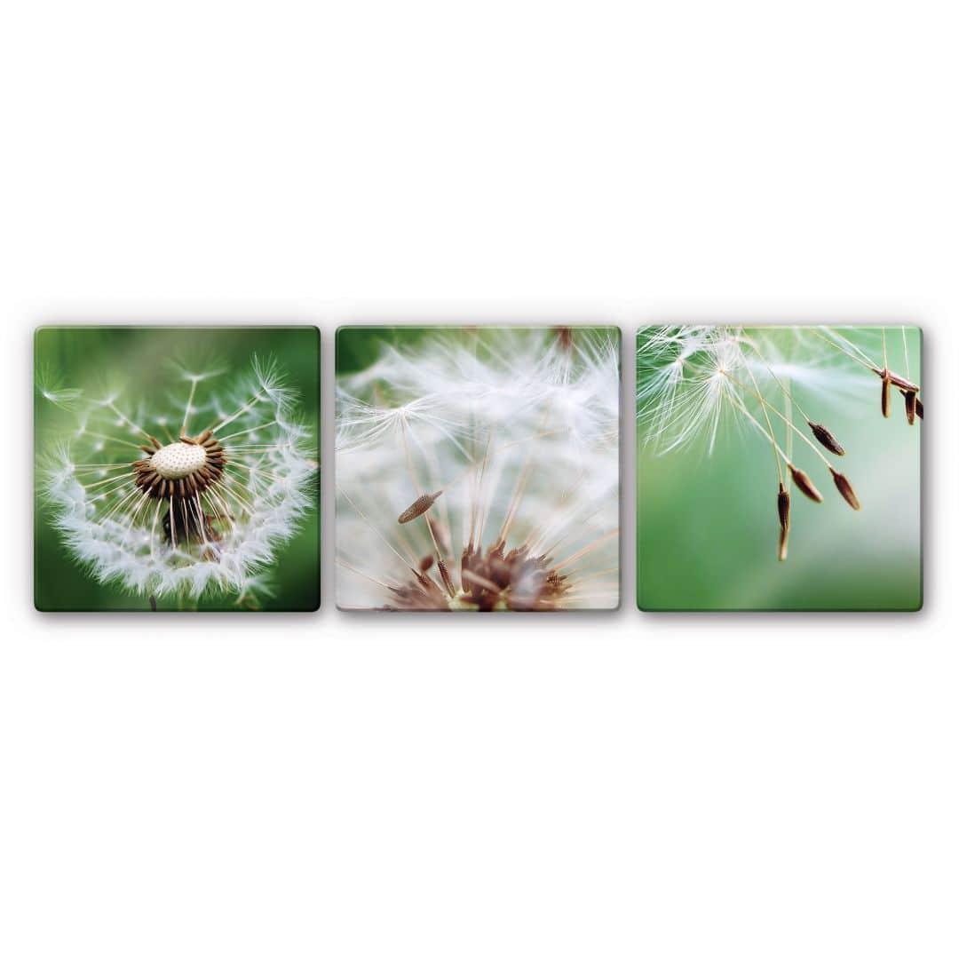 Glasbild Fliegerschirmchen auf Reise (3-teilig)