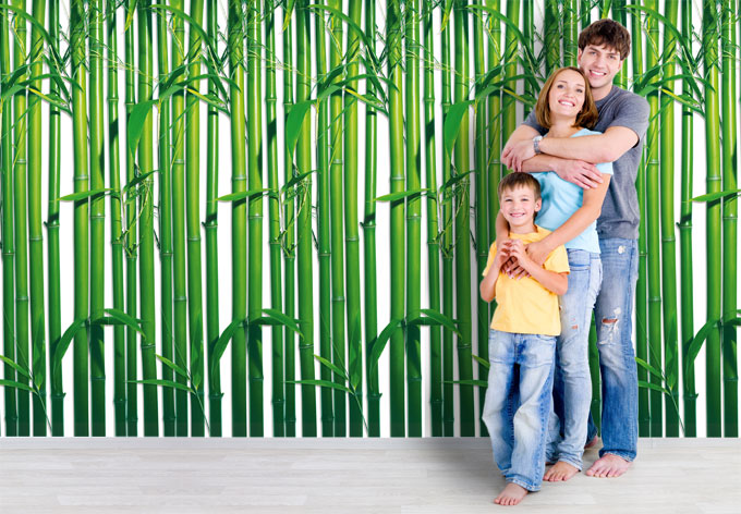 Bamboo Forest - Photo Wallpaper