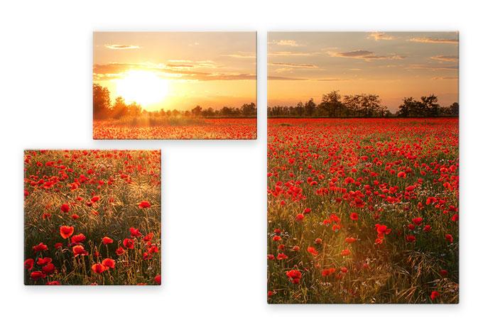 Glasschilderijen Klaprozenveld Zonsondergang - 3-delig