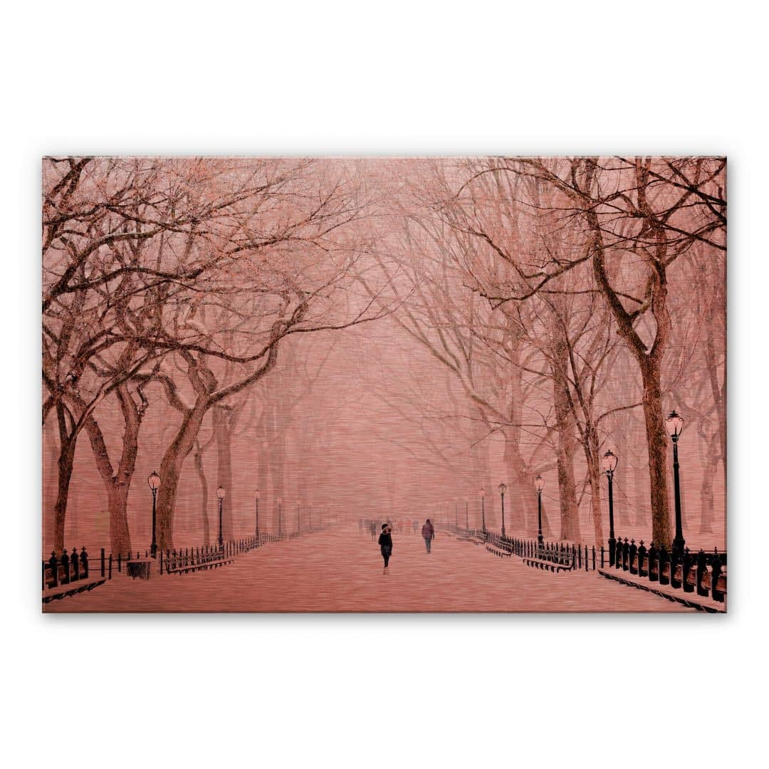 Alu-Dibond-Kupfereffekt - Winter im Central Park