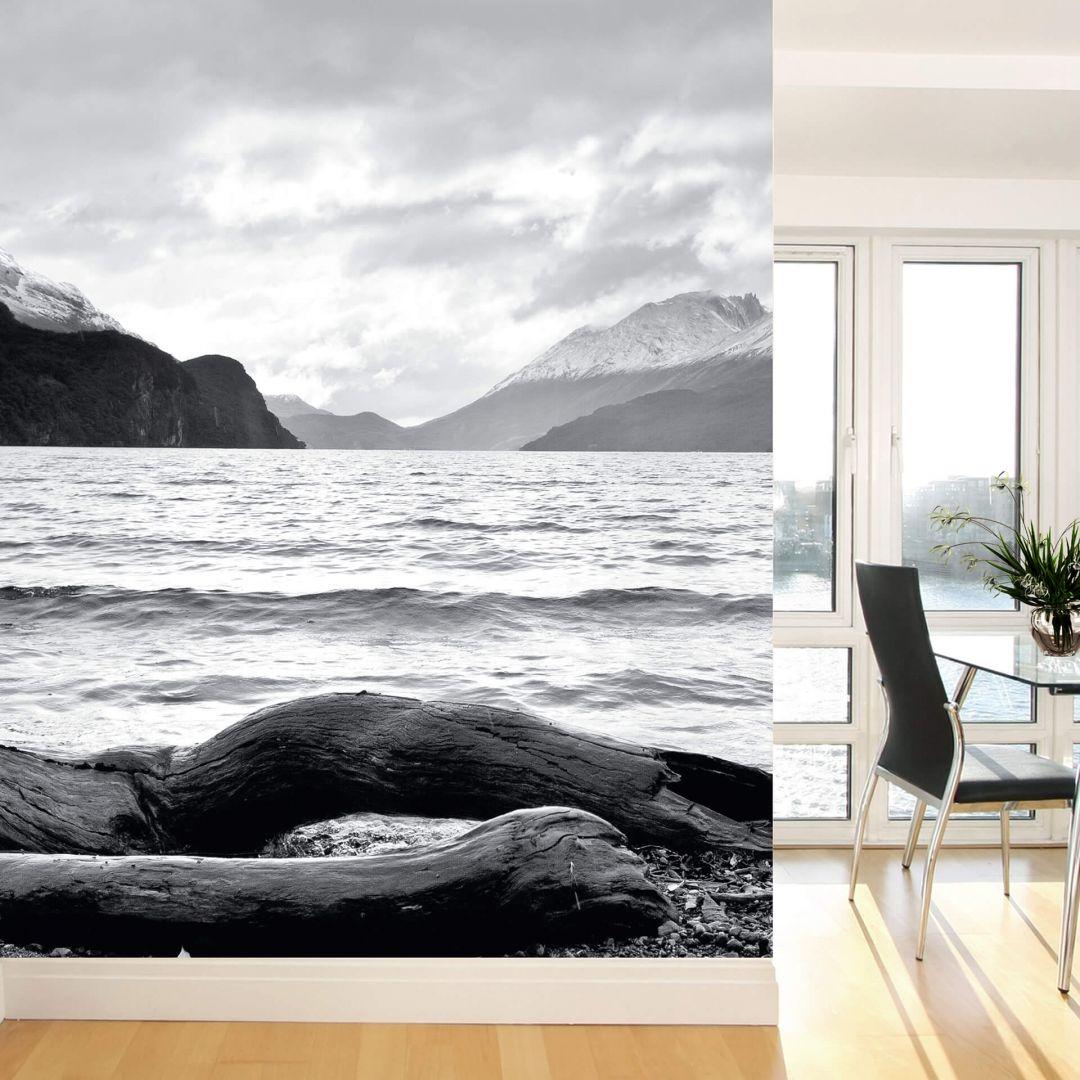 Log and Lake - Photo Wallpaper