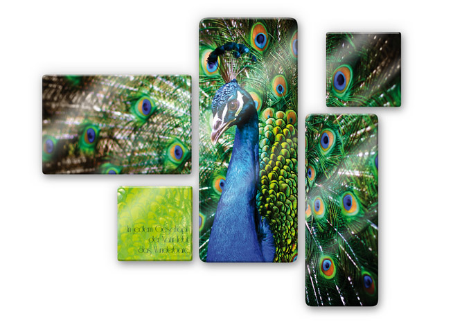 Glasbild In jedem Geschöpf der Natur (5-teilig)