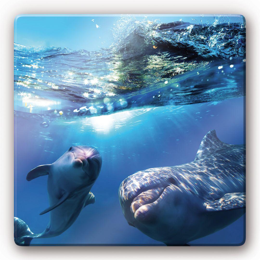tableau en verre dauphins sous l 39 eau. Black Bedroom Furniture Sets. Home Design Ideas