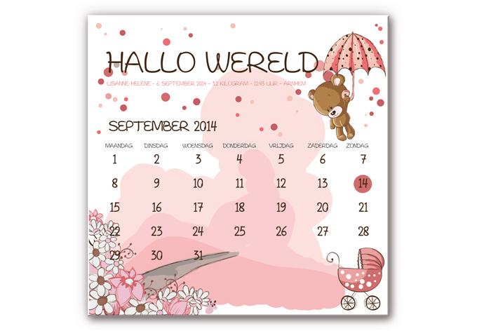 Wanddecoratie Hallo Wereld Geboortebord - Meisje