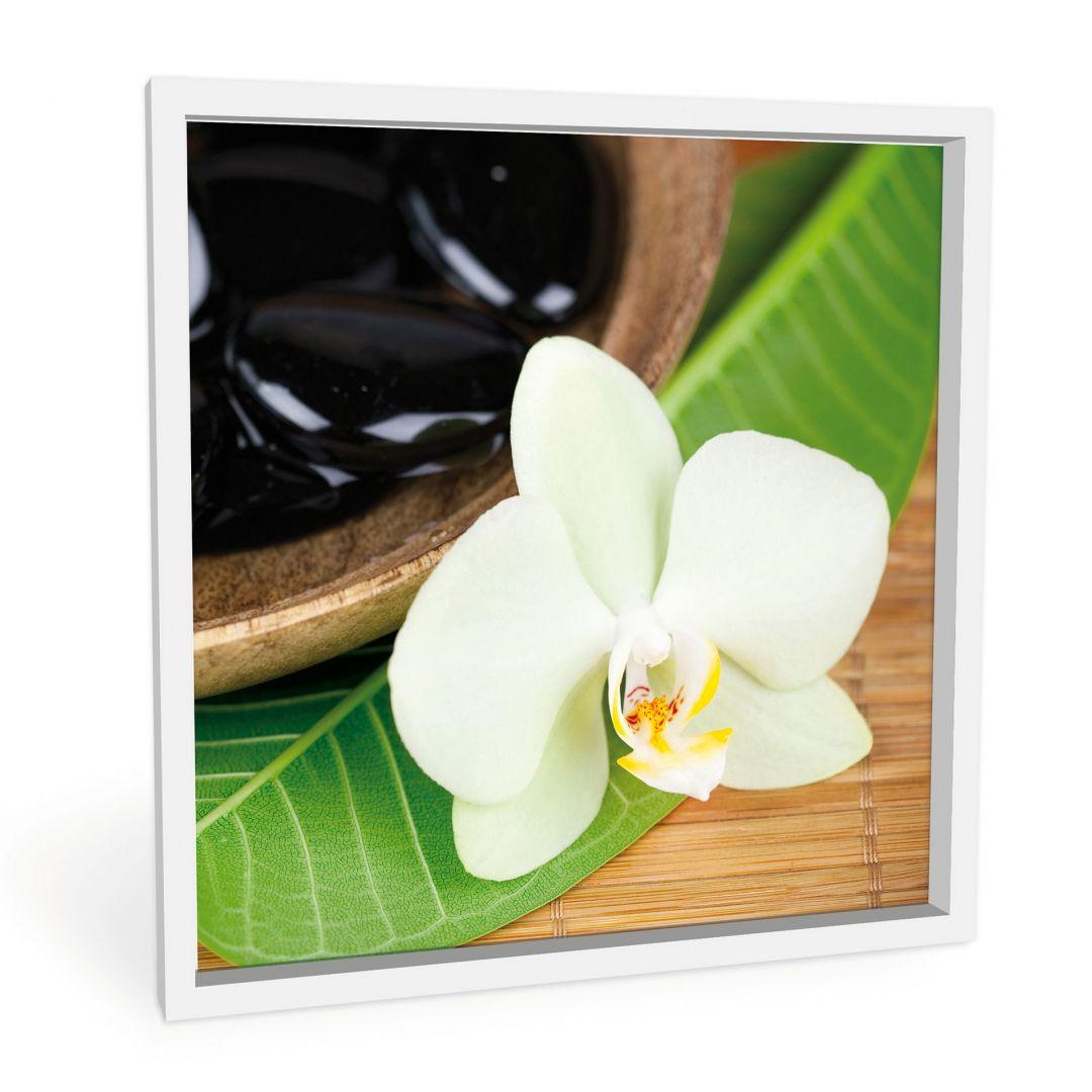 Forex print Wellness oasis - square