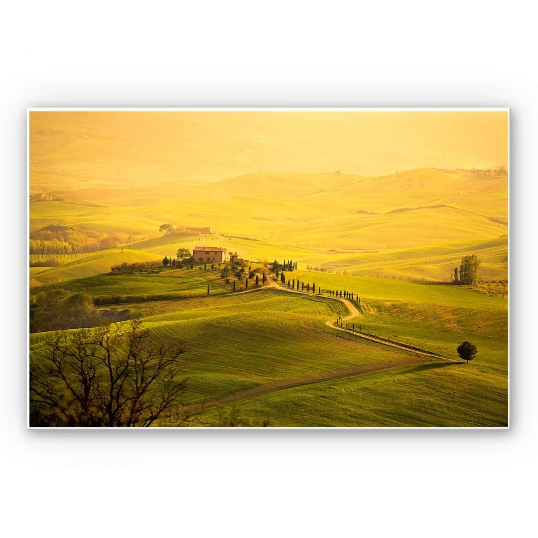 wanddecoratie blik op toscane