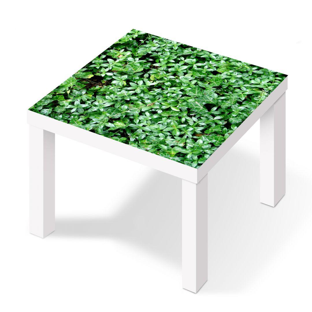 Pellicola adesiva il pollice verde - Pellicole adesive per mobili ikea ...