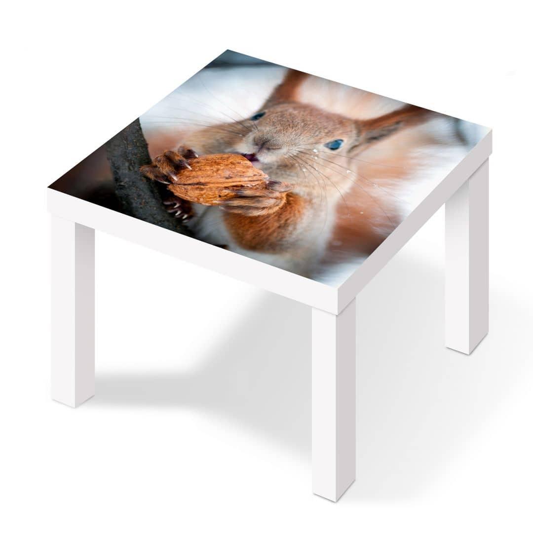 Pellicola adesiva scoiattolo con noce - Pellicole adesive per mobili ikea ...