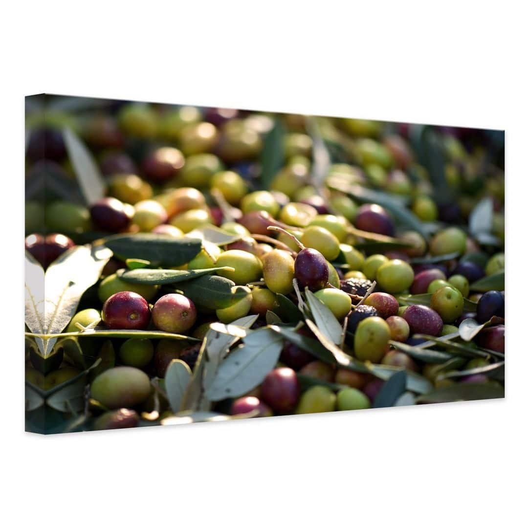 Leinwandbild mediterrane oliven wall - Mediterrane wandbilder ...