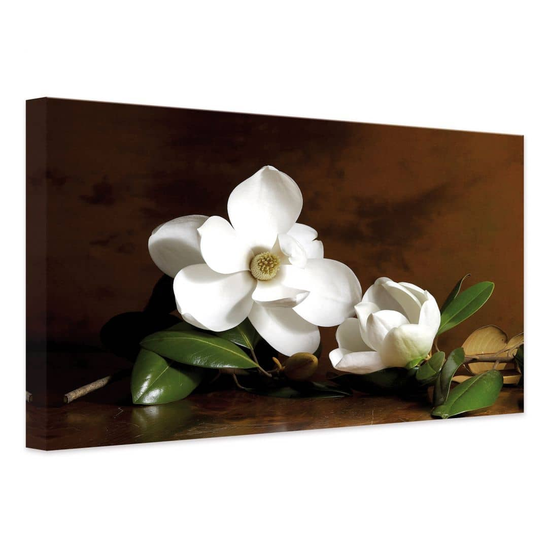 Magnolia Branch With Leaves Canvas Print Wall Art Com