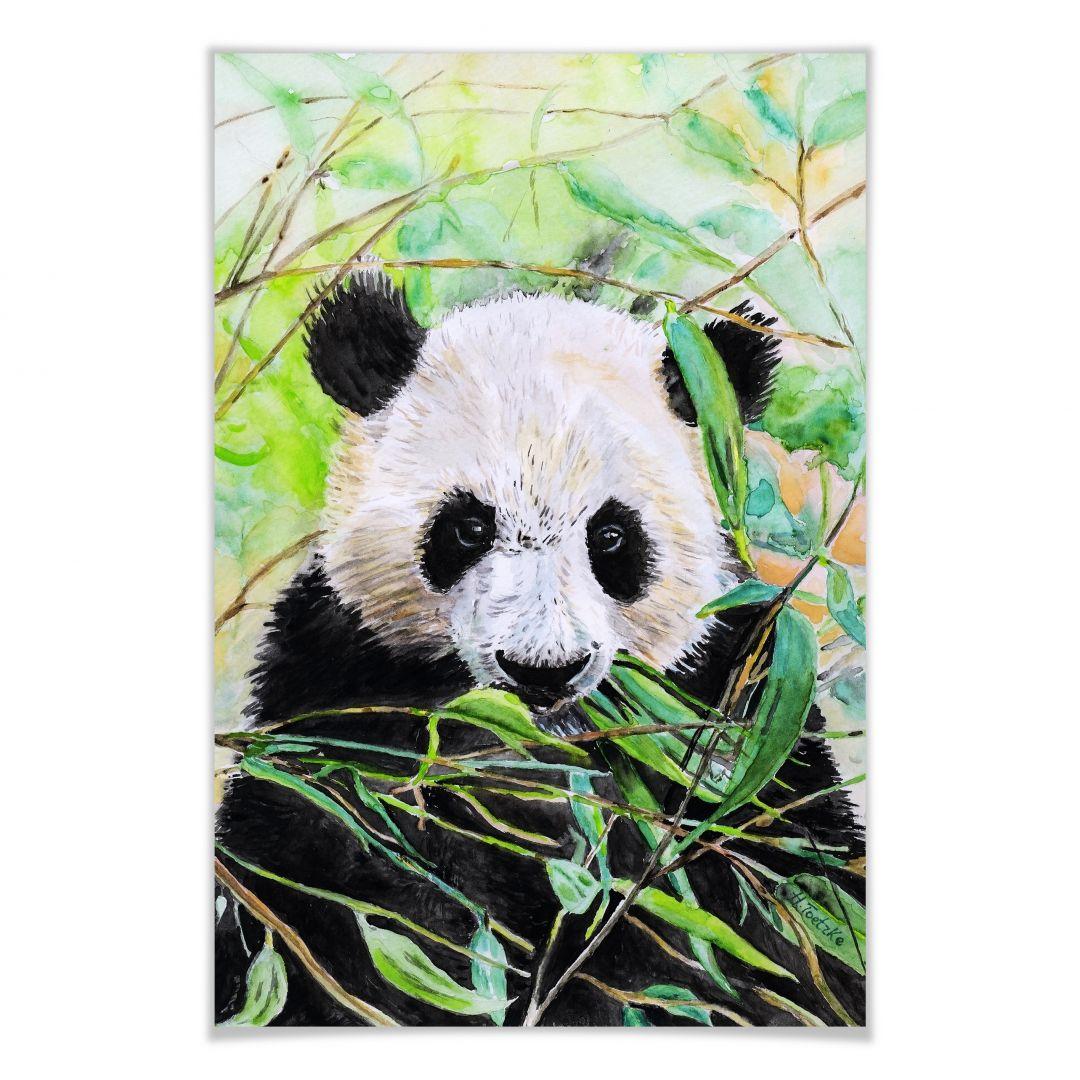 Poster Toetzke - Pandabeer