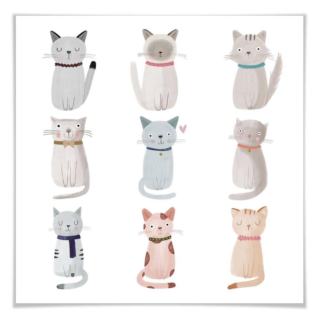 Poster Loske - Cat Family