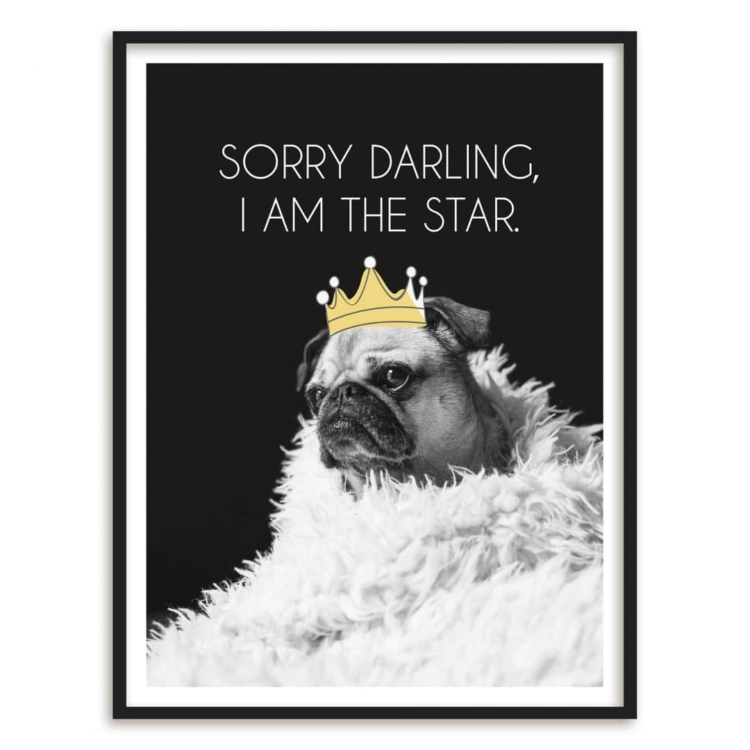 Poster con cornice sorry darling for Cornice poster 61x91