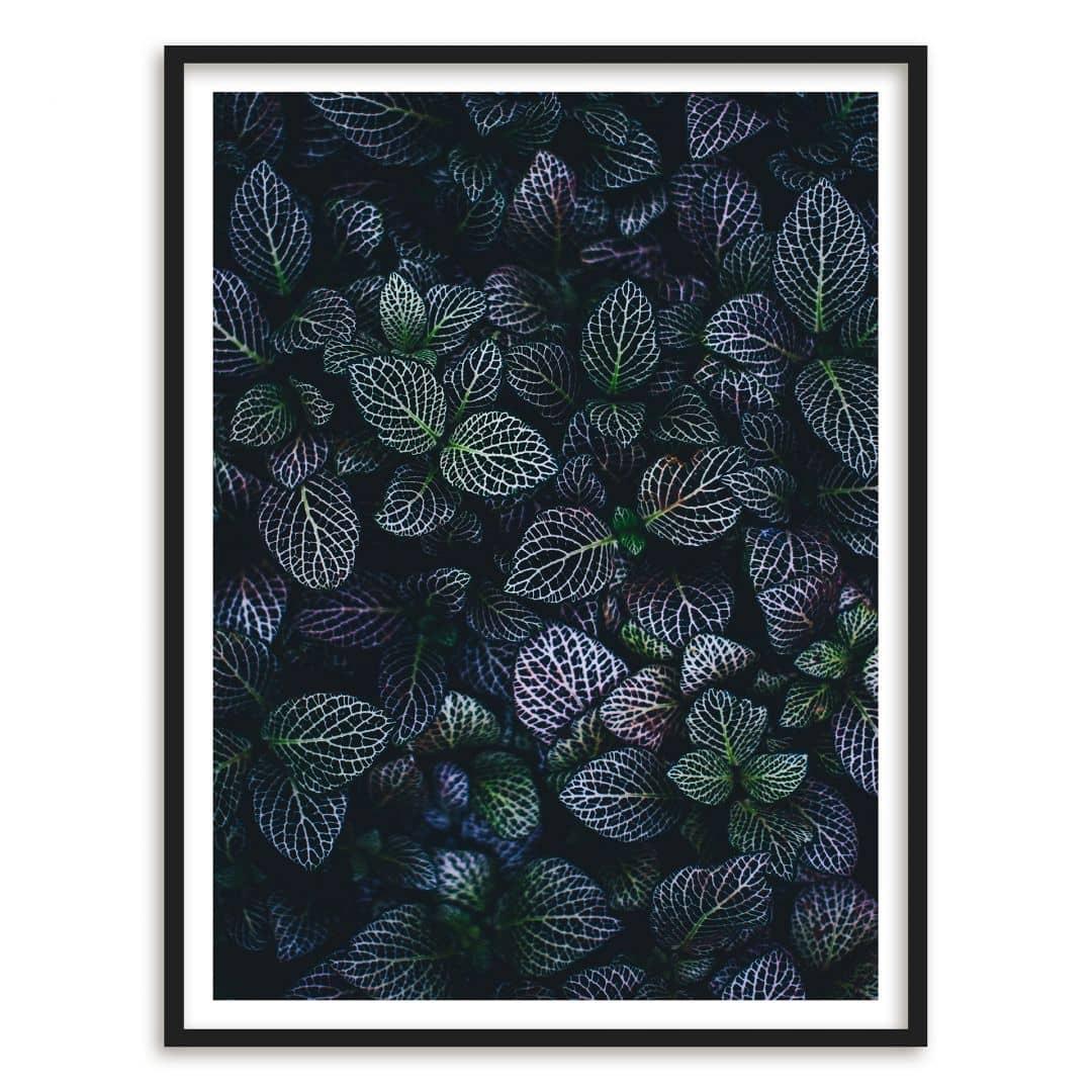 Poster mit Bilderrahmen Botanical Contrast