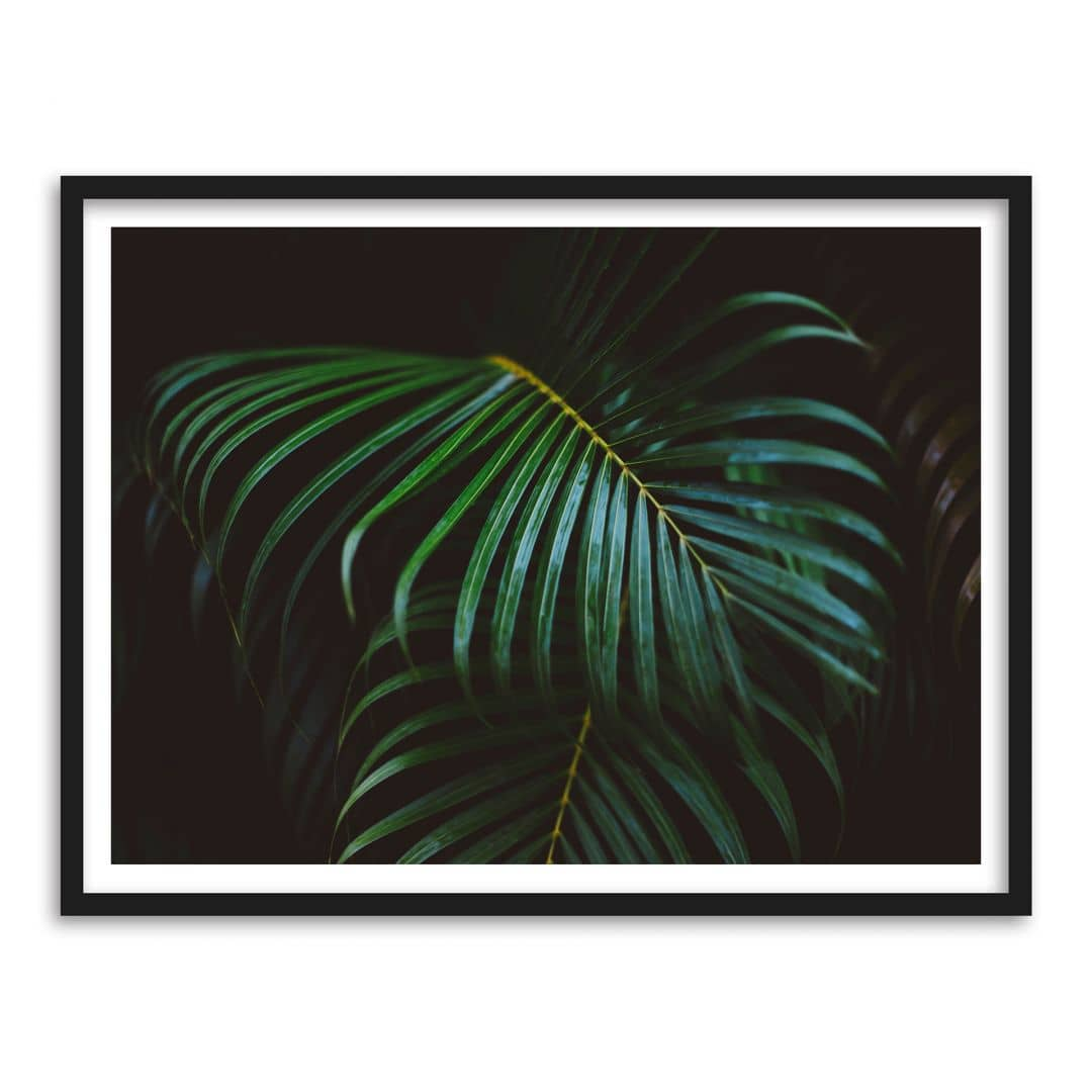 Poster mit Bilderrahmen Botanical 04