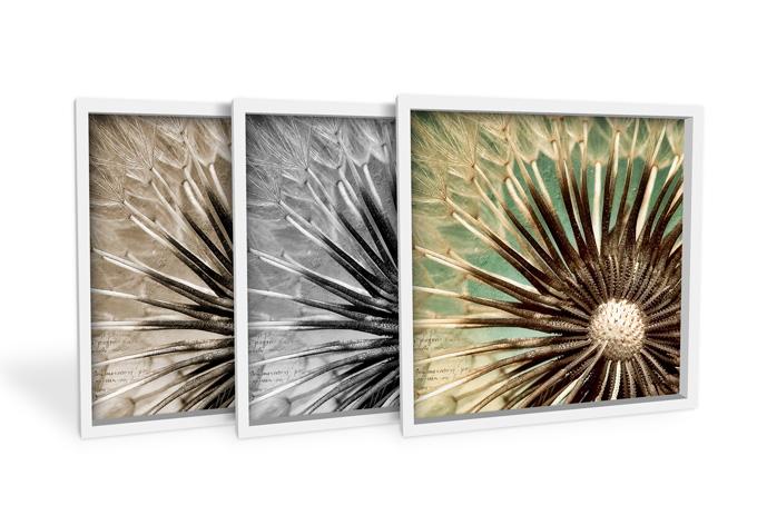Wandbild Pusteblumen-Poesie - quadratisch
