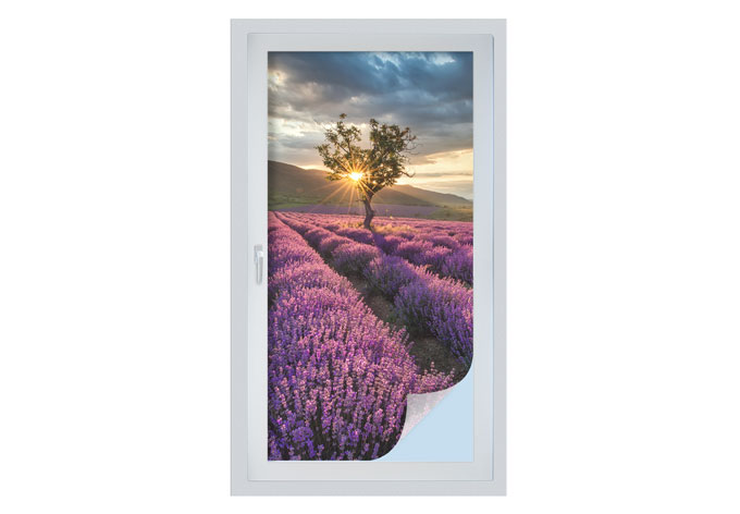 Pellicola adesiva per vetri fiori di lavanda in provenza for Finestra 50x100