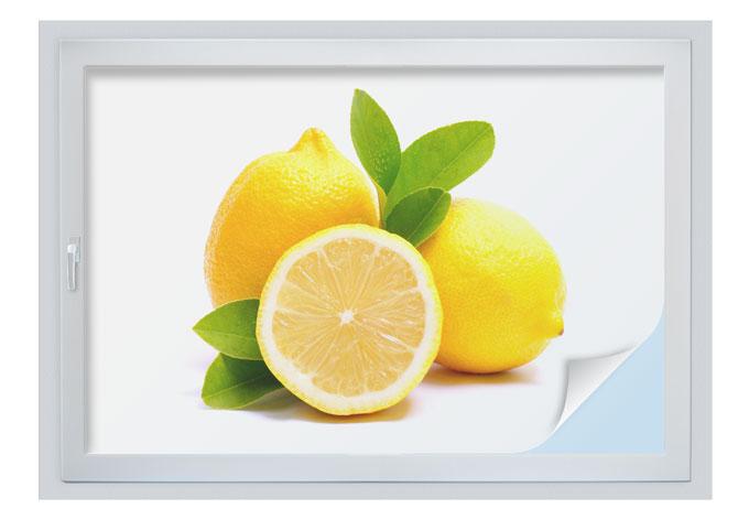 Pellicola adesiva per vetri limoni wall for Pellicola adesiva per vetri ikea
