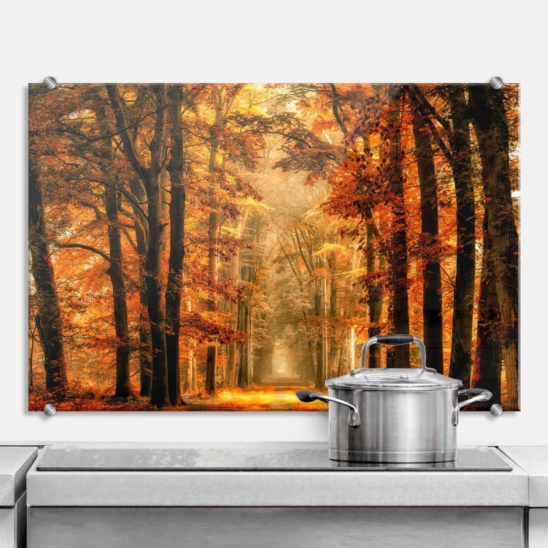 spatscherm van de goor herfst wall. Black Bedroom Furniture Sets. Home Design Ideas
