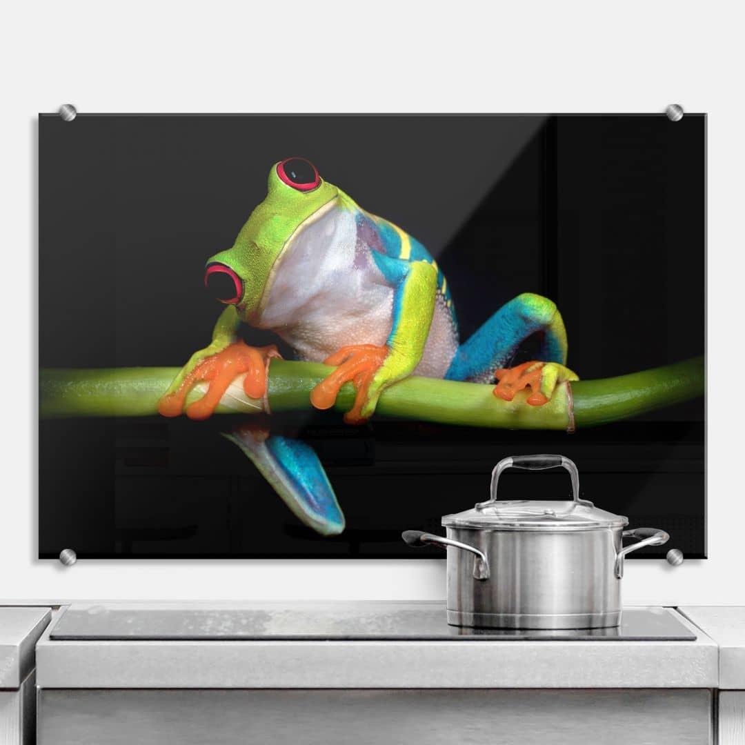 Splashback Valverde – Green Frog
