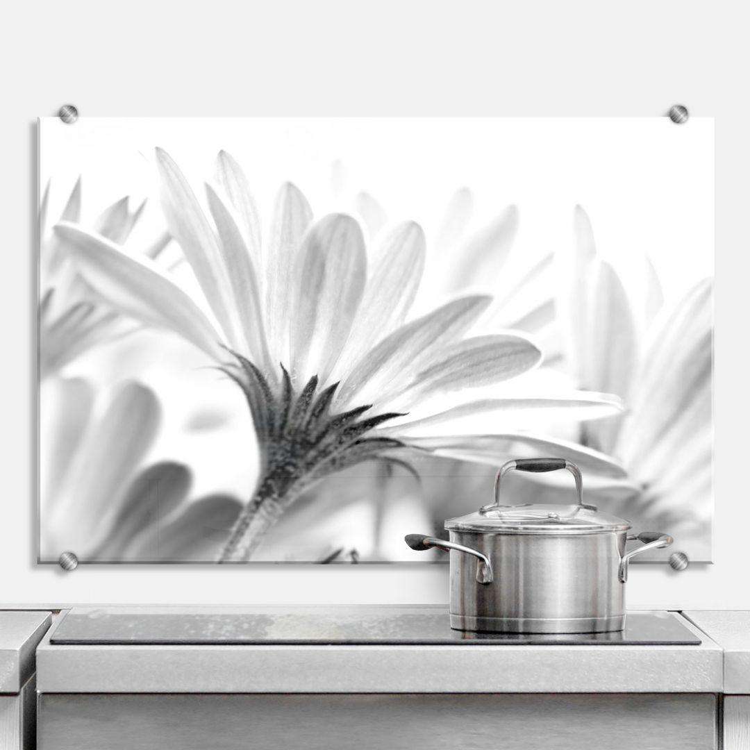 Spritzschutz Gänseblümchen im Detail
