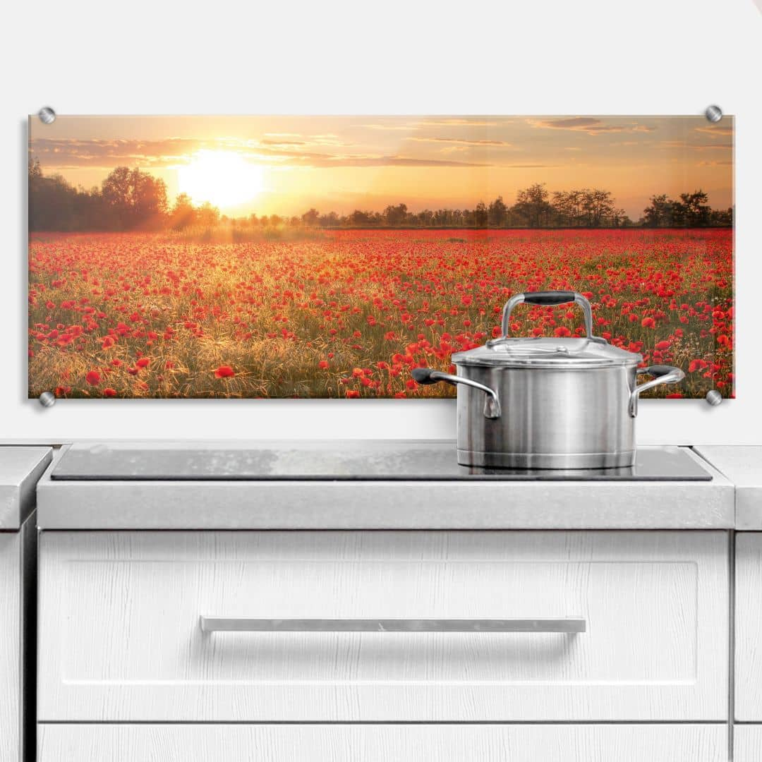 Küchenrückwand Mohnfeld im Sonnenuntergang - Panorama