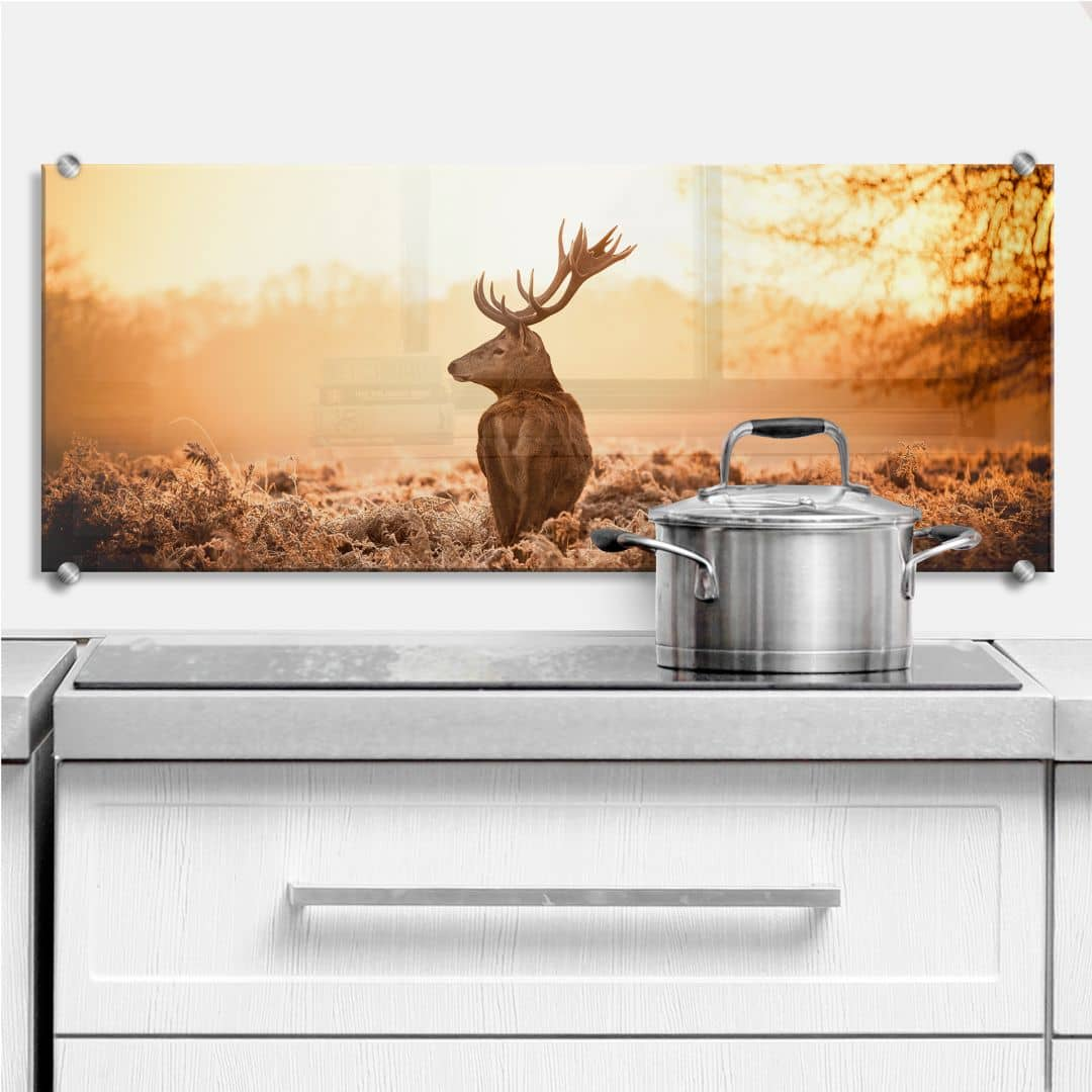 Majestic Deer - Panorama - Kitchen Splashback