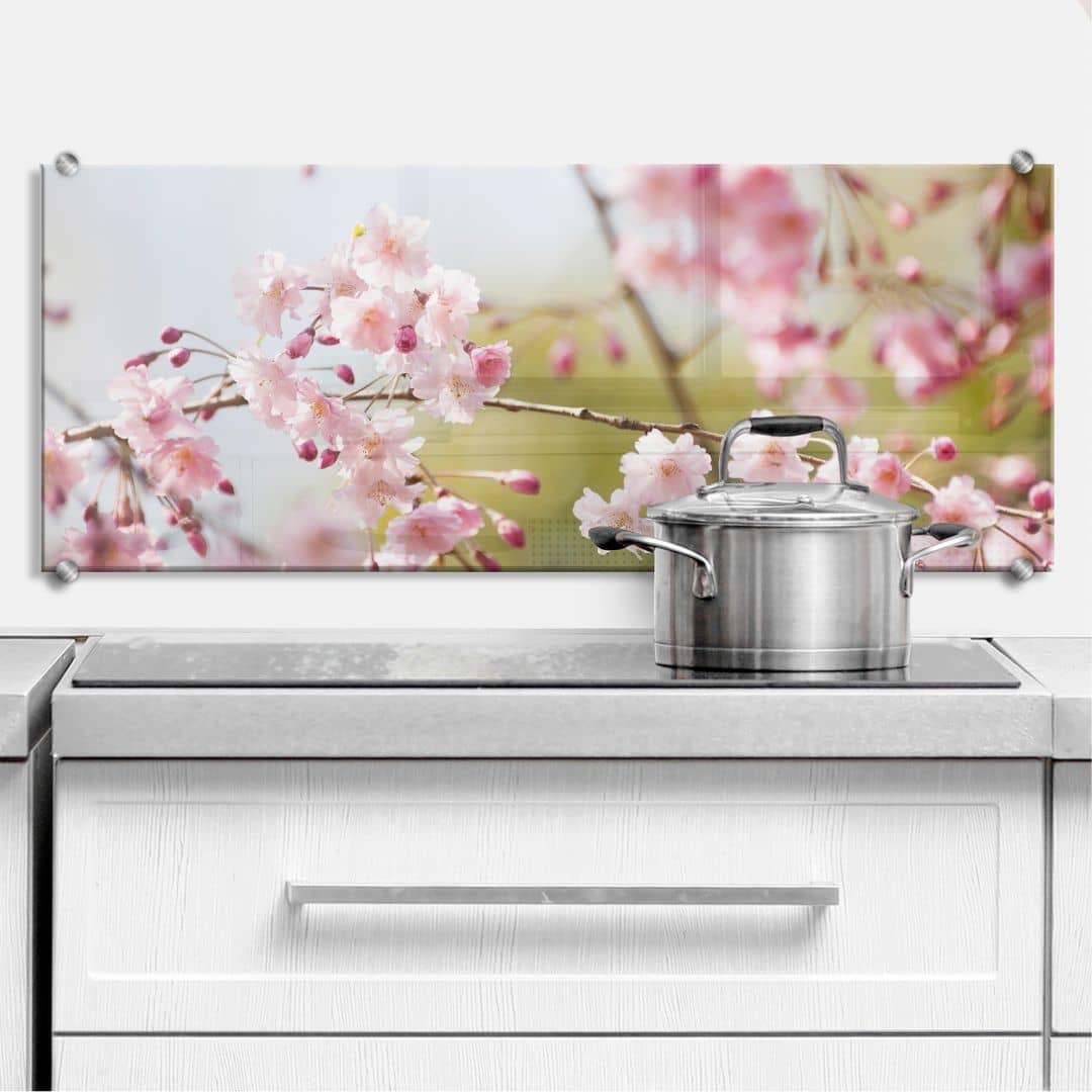 Küchenrückwand Cherry Blossoms - Panorama