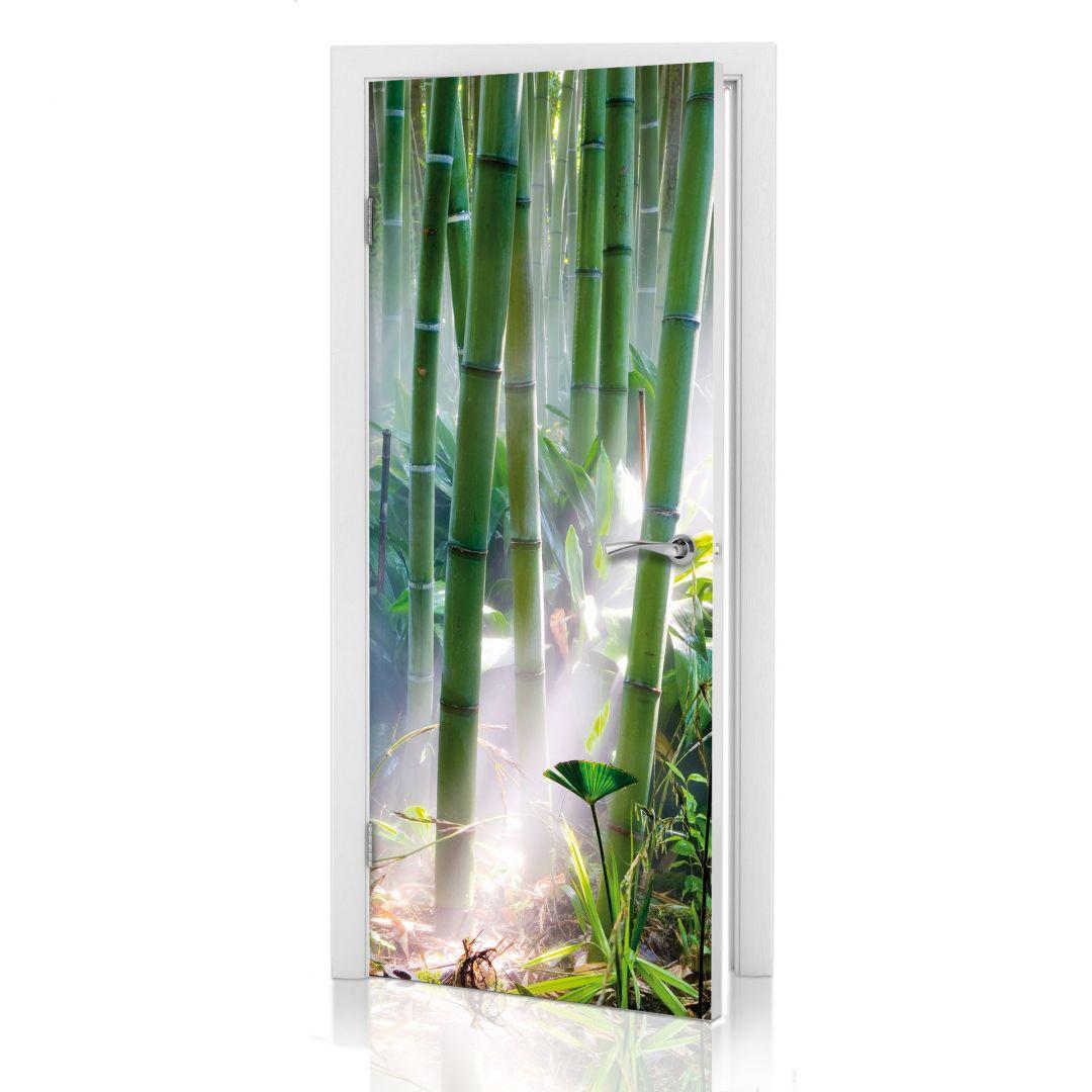 poster de porte for t de bambous. Black Bedroom Furniture Sets. Home Design Ideas