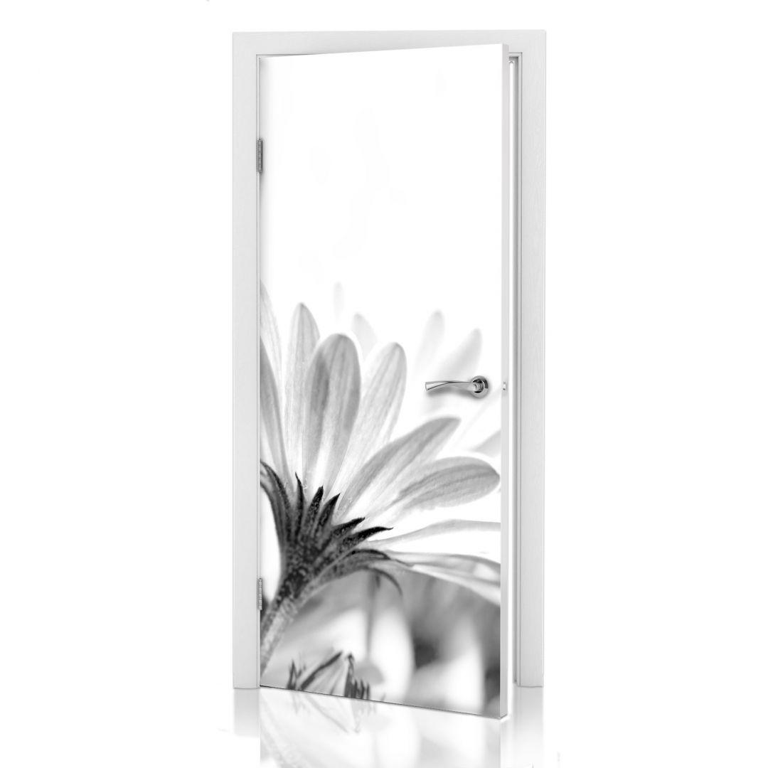 Adesivi per porte margherita in dettaglio for Adesivi per porte in legno