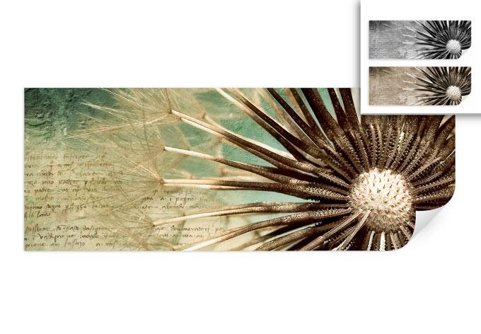 Wallprint W - Pusteblumen-Poesie - Panorama