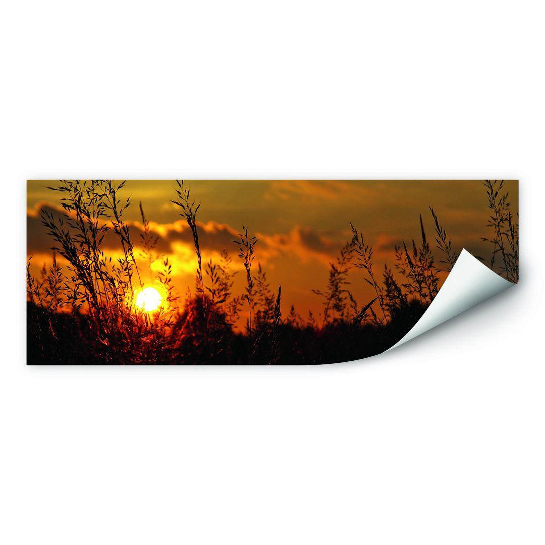 Wallprint W - Sonnenuntergang