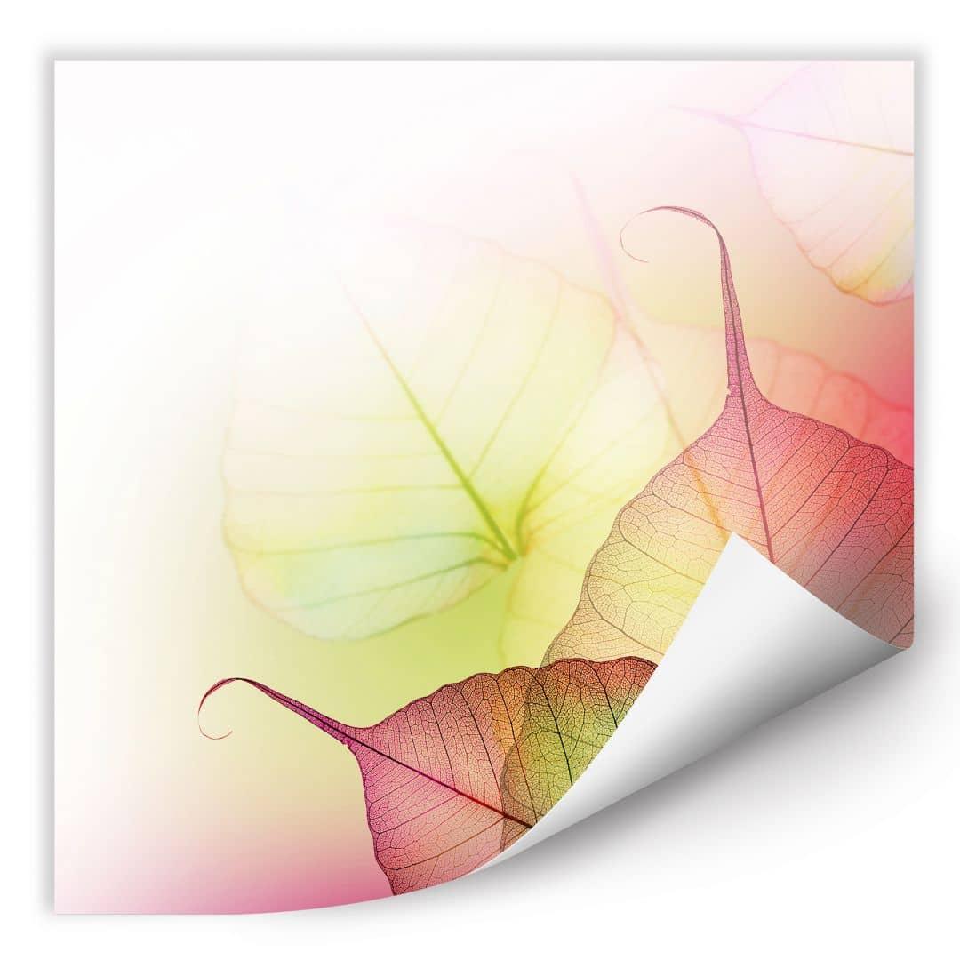 Wallprint W - Pink Design