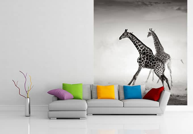 fototapete die flucht von k l wall art dekorieren sie die wand gro fl chig mit giraffen. Black Bedroom Furniture Sets. Home Design Ideas