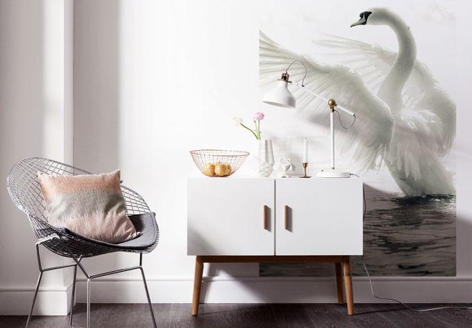 fototapete majest tischer schwan edle deko f r die w nde wall. Black Bedroom Furniture Sets. Home Design Ideas