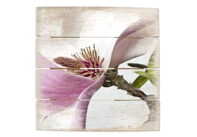 Houten Wanddecoratie Magnolia Achterzijde: met haken