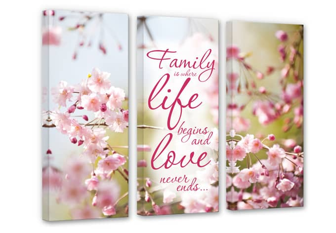 Family is where Life begins (3 parts) Canvas print