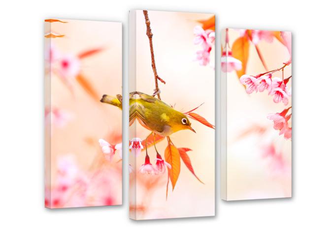 Singing Birds in Spring Canvas print (3 parts)