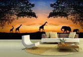 Fototapeten - Fototapete African Sunset