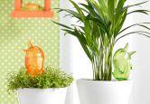 Wohnaccessoires - Wasserspeicher Bördy grün