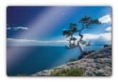 Glasbilder - Glasbild Sea and Tree 80x60 cm