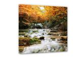 Leinwandbilder - Leinwandbild Autumn Waterfall