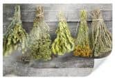 Poster dried herbs