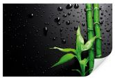 Wallprints - Wallprint W - Bamboo Over Black 45x30cm