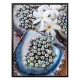 Poster Colombo - Schwarze Perlen von Tahiti